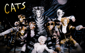 Cats musical image